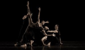 Ballets NY